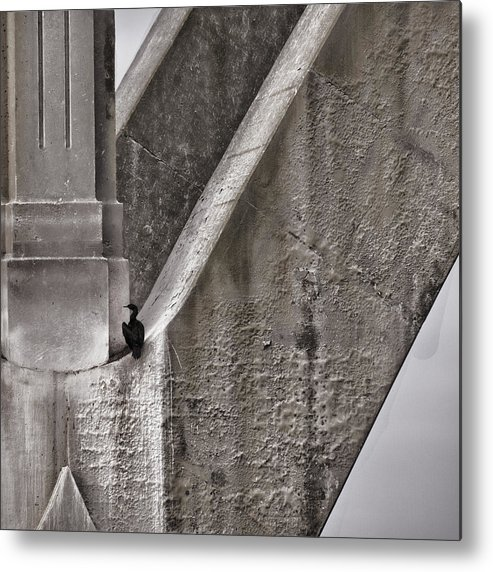 Architecture Metal Print featuring the photograph Architectural Detail by Carol Leigh