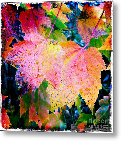 Iphoneography Metal Print featuring the photograph Fall Leaves by Matt Suess