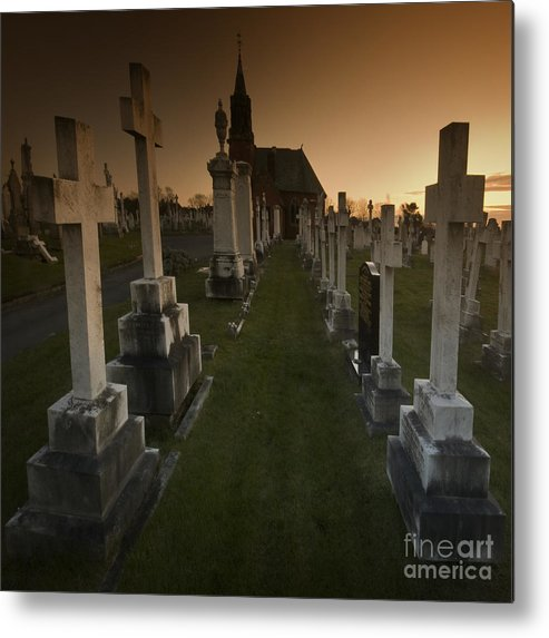 Graveyard Metal Print featuring the photograph The Graveyard by Angel Ciesniarska