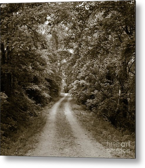 Allen Metal Print featuring the photograph Tennessee Country by Avril Christophe