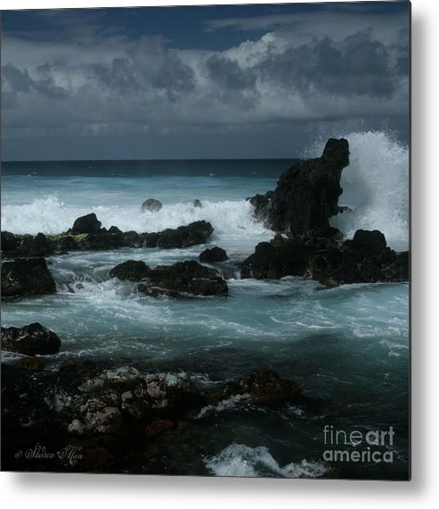Aloha Metal Print featuring the photograph A Delicate Way by Sharon Mau