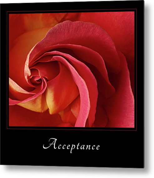 Acceptance Metal Print featuring the photograph Acceptance 1 by Mary Jo Allen