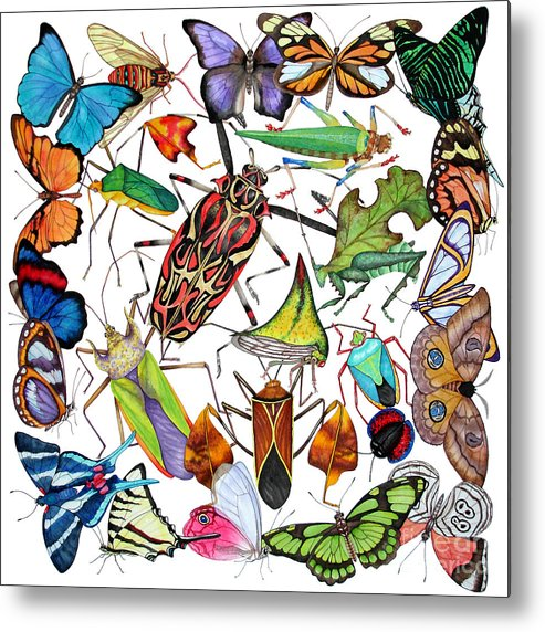 Insects Metal Print featuring the painting Amazon Insects by Lucy Arnold