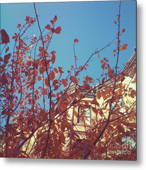 Fall Metal Print featuring the photograph By The Autumn Tree 2 by Onedayoneimage Photography