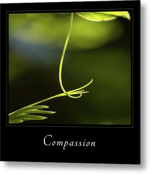 Inspiration Metal Print featuring the photograph Compassion 2 by Mary Jo Allen