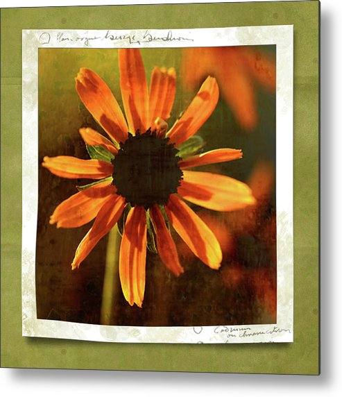 Echinacea Metal Print featuring the photograph Face The Day by Bonnie Bruno