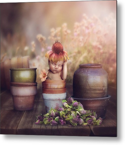 Flowers Metal Print featuring the photograph Flower Baby by Cindy Grundsten