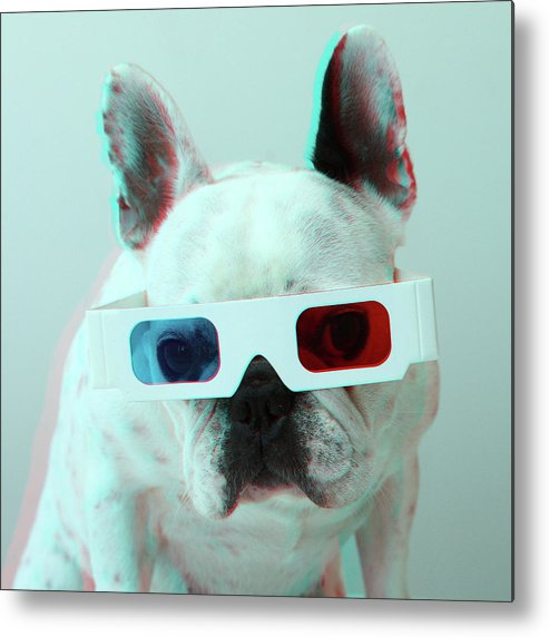 Square Metal Print featuring the photograph French Bulldog With 3d Glasses by Retales Botijero