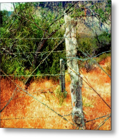 Paul Tokarski Metal Print featuring the photograph Glowing Desert Fence by Paul Tokarski