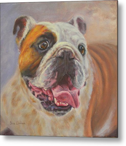 English Bulldog Portrait Metal Print featuring the painting Griff by Sue Linton
