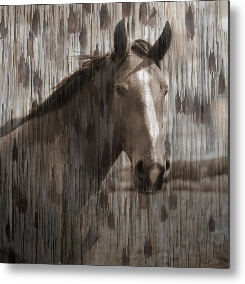 Horse Metal Print featuring the photograph Horse At Home On The Range by Karla Beatty