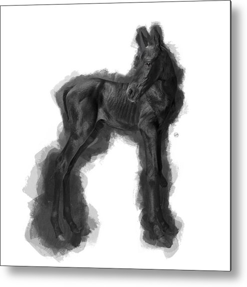 Imia Design Metal Print featuring the digital art Horse Foal No 01 by Maria Astedt