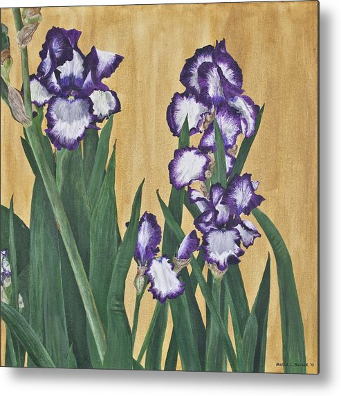 Iris Flower Paintings Metal Print featuring the painting Luscious Iris by Marla Saville