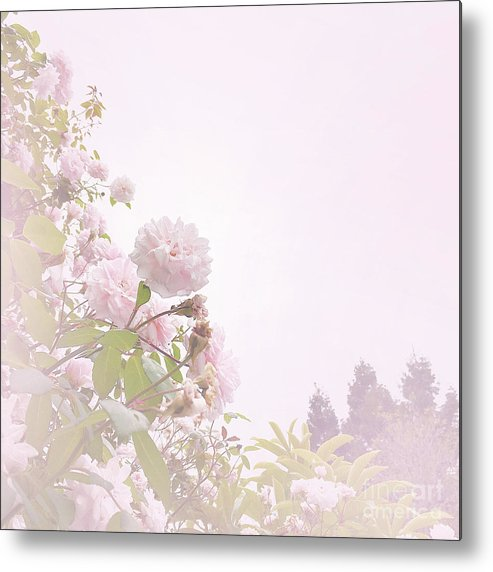 Pink Metal Print featuring the photograph May Basket Day by Cindy Garber Iverson