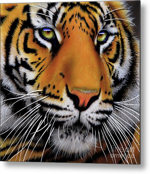 Tiger Metal Print featuring the painting November Tiger by Jurek Zamoyski