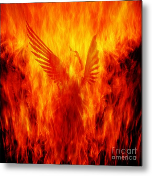 Phoenix Metal Print featuring the photograph Phoenix Rising by Andrew Paranavitana
