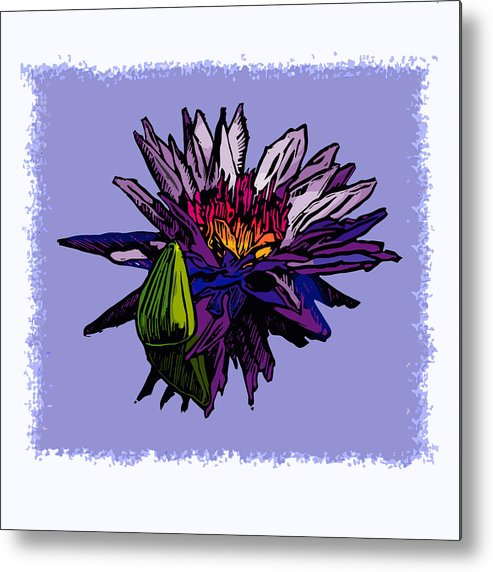 Water Lily Metal Print featuring the drawing Purple Water Lily by John Lautermilch