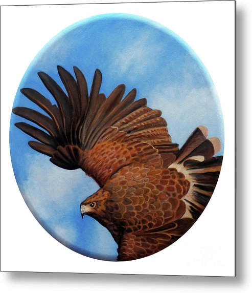 Hawk Metal Print featuring the painting Riding The Wind by Brian Commerford