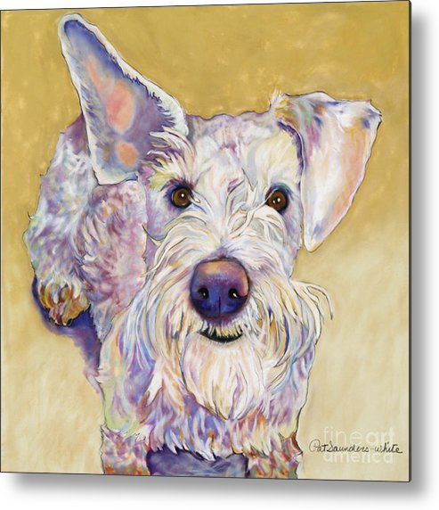 Schnauzer Metal Print featuring the pastel Scooter by Pat Saunders-White
