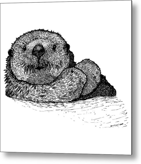 Drawing Metal Print featuring the drawing Sea Otter by Karl Addison