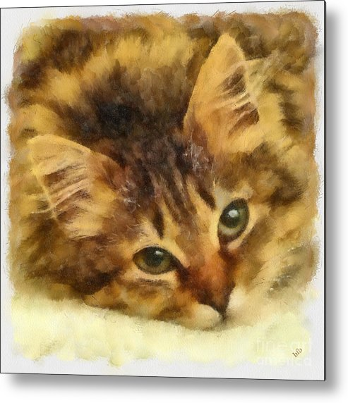 Cat Metal Print featuring the photograph Soulful Eyes by Betsy Foster Breen