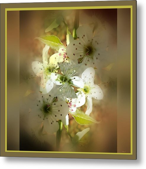 Spring Metal Print featuring the photograph Spring Blossoms by Therese Felter