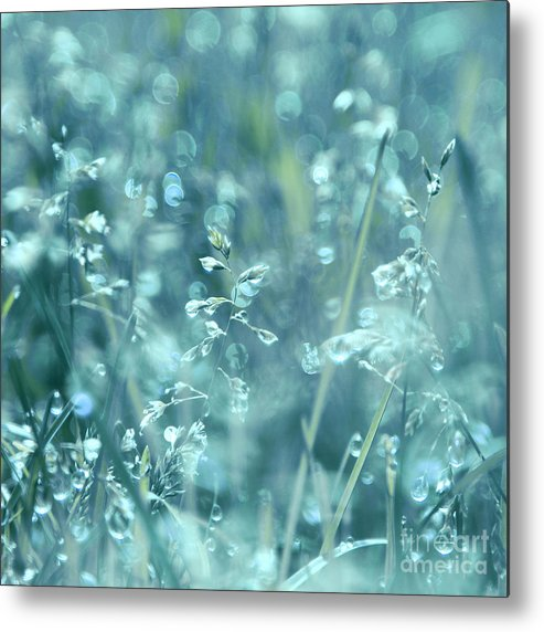 Blue Metal Print featuring the photograph Sweet Wake-up Call by Aimelle