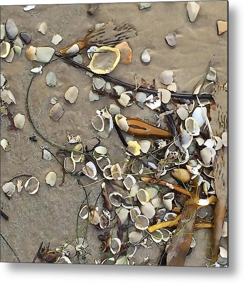 Crab Shells Metal Print featuring the photograph Tiny Crab Shells by Art Block Collections