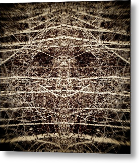 Trees Metal Print featuring the digital art Tree Mask by Wim Lanclus