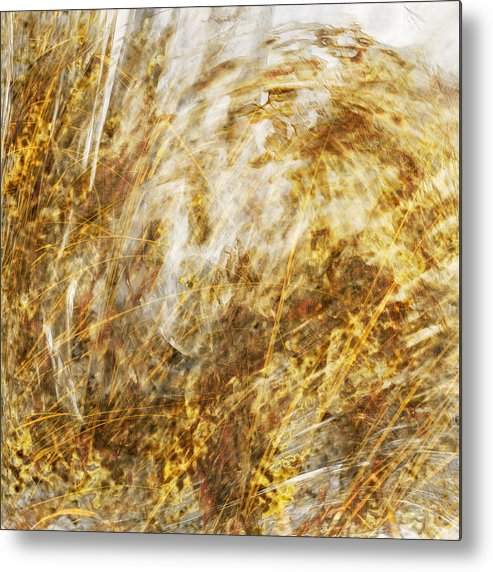Brush Metal Print featuring the digital art Waiting For The Quail by Gae Helton