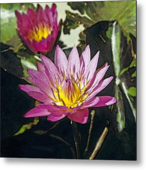 Beautiful Metal Print featuring the photograph Water Lily by Maria Heyens