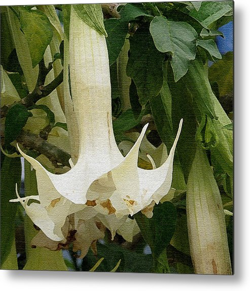 Flower Metal Print featuring the photograph White Flower by Sarah Madsen