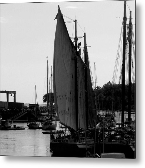 Boats Metal Print featuring the digital art White Sail by Donna Thomas