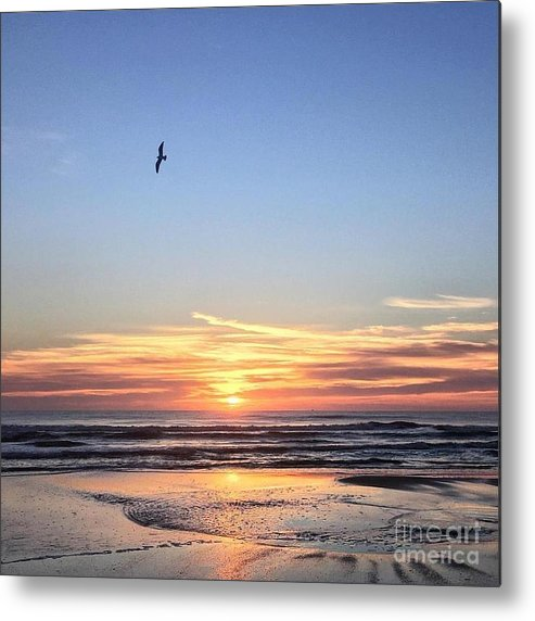 St. Augustine Metal Print featuring the photograph World Gratitude And Peace Day by LeeAnn Kendall