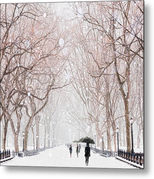 Snow Metal Print featuring the digital art A Snowy Lane by Tim Palmer