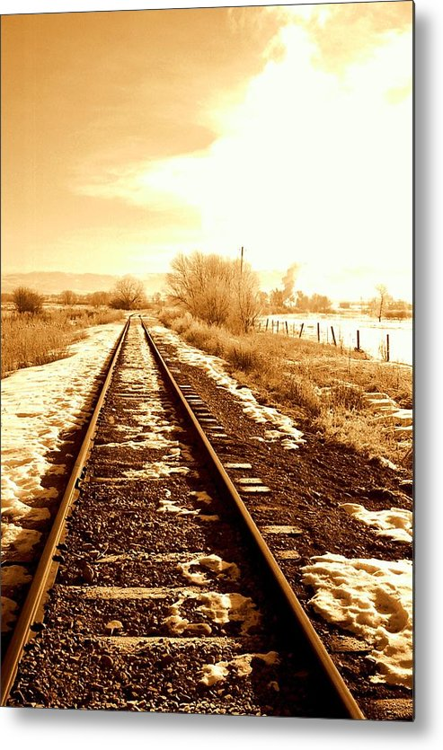 Railroad Metal Print featuring the photograph Tracks by Caroline Clark
