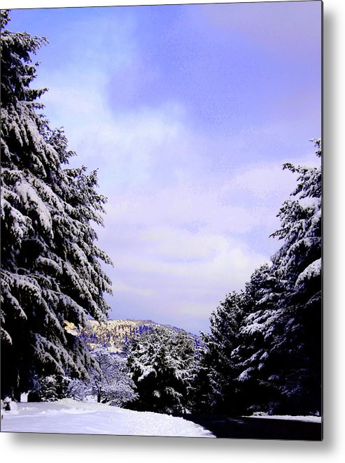 Landscape Metal Print featuring the photograph Pretty And Cold by Linwood Branham