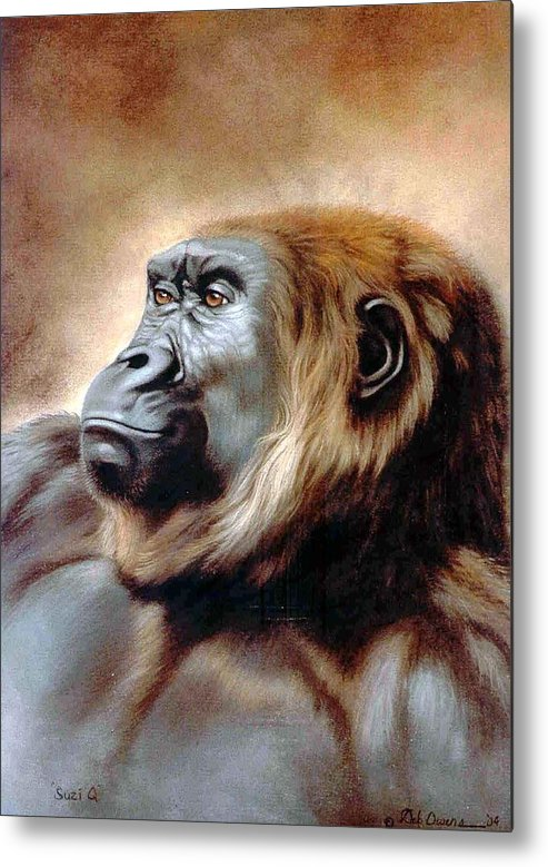 Gorilla Metal Print featuring the painting Suzie Q by Deb Owens-Lowe