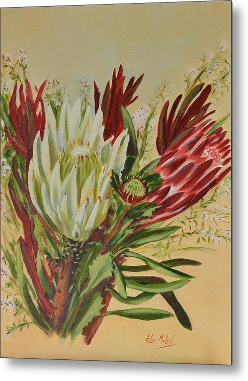 Floral Art Metal Print featuring the painting Protea Bunch by Aileen McLeod