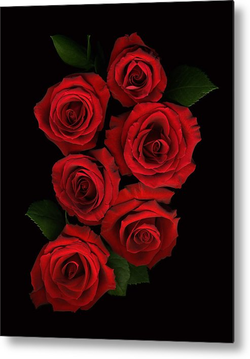 Romance Metal Print featuring the photograph Roses of Love by Deborah J Humphries