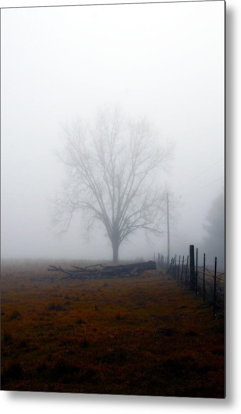 Trees Metal Print featuring the photograph Foggy Sunday by Leon Hollins III