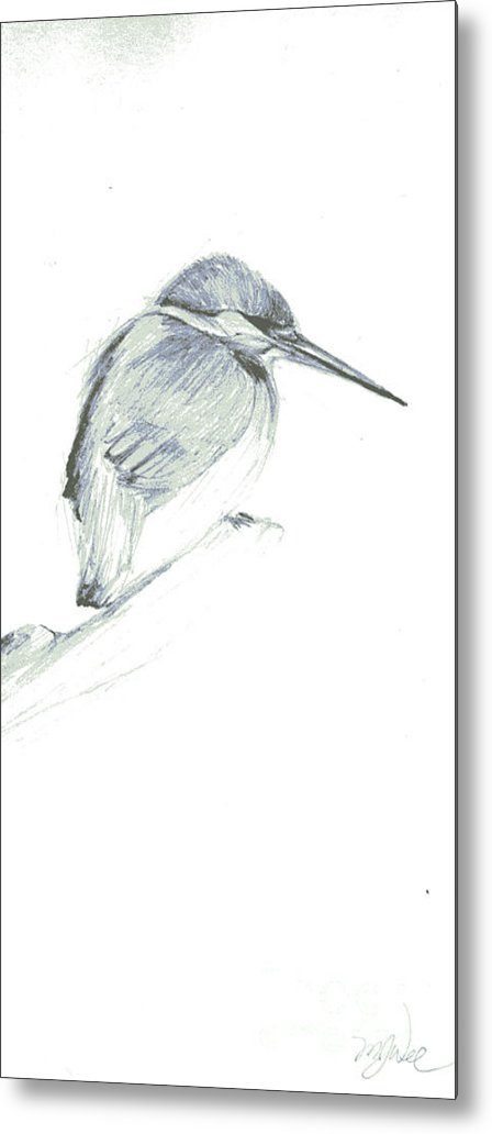 A Kingfisher Waiting For Prey- Pencil Drawing Metal Print featuring the drawing Still by Mui-Joo Wee