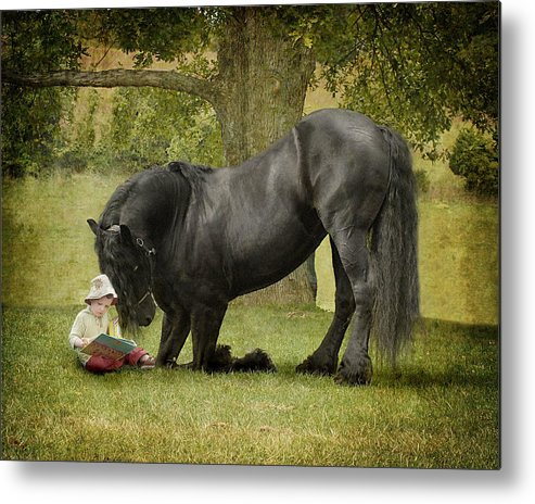 Friesian Metal Print featuring the photograph Once Upon A Time by Fran J Scott