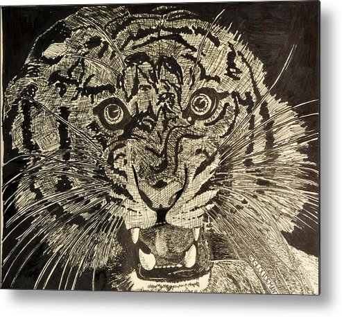 Tiger Metal Print featuring the drawing Tiger by Denis Gloudeman