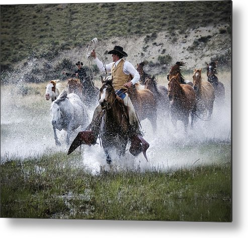 Sombrero Ranch Metal Print featuring the photograph Water Wranglers by Pamela Steege