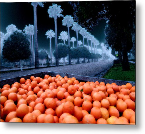 Oranges Metal Print featuring the photograph Litchfield Park by Jim Painter