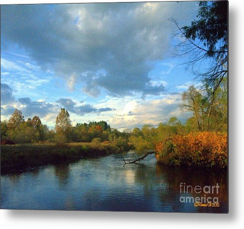 Water Metal Print featuring the photograph Forest Park by Rennae Christman