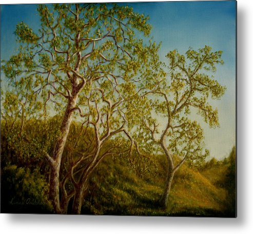Tree Metal Print featuring the painting Afternoon Sycamores by Lance Anderson