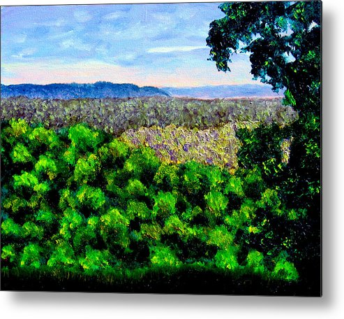 Plein Air Metal Print featuring the painting bcsp Pan by Stan Hamilton