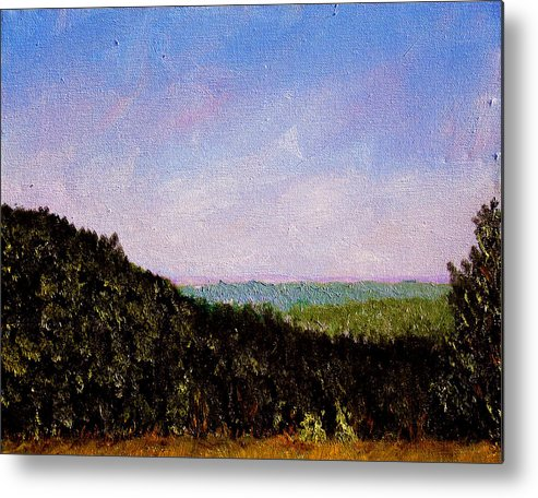 Plein Air Metal Print featuring the painting Bcsp3 by Stan Hamilton